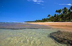 Águas calmas e morninhas durante a maré baixa em Taipu de Fora, Bahia