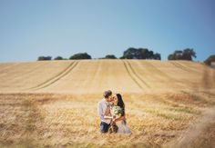 Sussex Corn Field