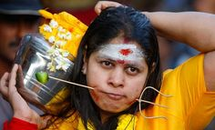 Thaipusam festival piercing- notice the traditional lime on the end. Limes often apparently feature prominently in the piercings.