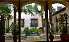 Patio Andaluz, situado en la pta. baja by Plantas Y Jardin, via Flickr