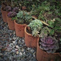 usar tejas para jardin - Buscar con Google