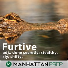 Furtive: done secretly; stealthy, sly, shifty