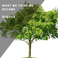 What we think we became!  #FridayInspiration Herbs, Tech, Plants, Inspiration, Women, Biblical Inspiration, Herb, Plant, Technology