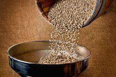 Terra Nera Beans