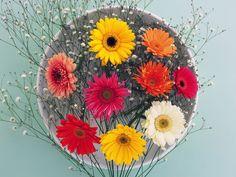 fleurs - Page 715