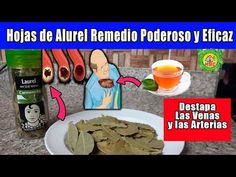 Tips, Youtube, Love, Contact Dermatitis, Bay Leaves, Cholesterol Levels, Allergies, Juice, Herbs