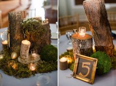 Our woodsy theme as captured by @Katelyn Alsop!  We loved our tiny gold woodland creatures.  :)