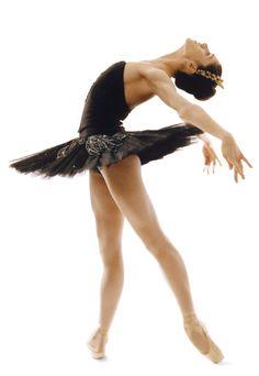 Paloma Herrera, American Ballet Theatre