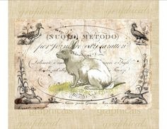 Vintage rabbit on antique ephemera animals spring for transfer to fabric paper burlap tote bags pillows jewelry cards No. 558 on Etsy, $1.00