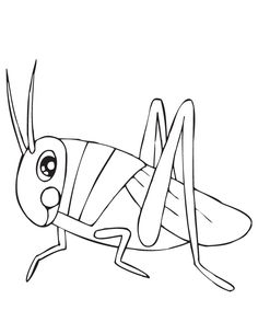 Cute Grasshopper Coloring Page