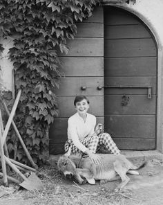 rareaudreyhepburn: Audrey Hepburn photographed by Norman Parkinson at La Vigna in Rome during the production of War and Peace, Classic Hollywood, Old Hollywood, Divas, Audrey Hepburn Photos, Aubrey Hepburn, Happy Girls, Retro, Norman, Movie Stars