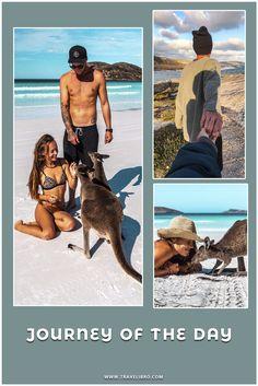 Roadtrip to Esperance, WA Journey by Maky & Matt. Kangaroos, Turquoise Water, White Sand Beach, Travel Couple, Western Australia, Beaches, Past, Road Trip, Walking