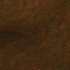 handpaintedtextures_dirt-ground-1.jpg (512×512)