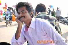 Actor Sivakarthikeyan Gallery - Cinemagrind.com