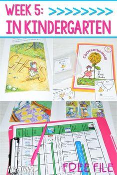 Kindergarten Lesson