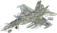http://www.flightglobal.com/airspace/media/militaryaviation1946-2006cutaways/images/38301/boeing-ea-18g-growler-cutaway.jpg