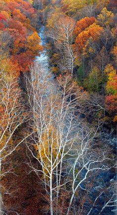 The Cuyahoga River in Gorge Metro Park (Photo by volunteer Robert George)