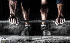 Muskeln und Training