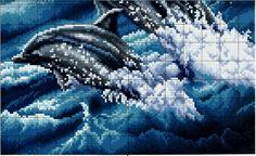 delfines1.jpg (1427×872)
