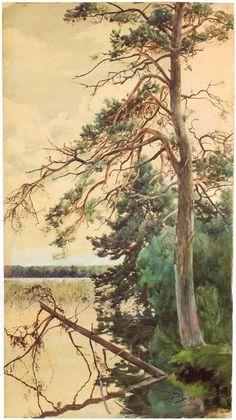 Switez_3.jpg (449×800)Świteź 1883. Akwarela na papierze. 92,5 x 52,5 cm.  Muzeum Narodowe w Krakowie.