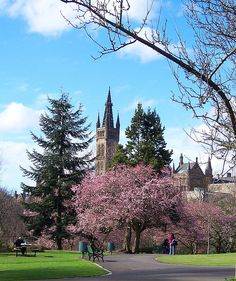 Springtime at Kelvingrove park