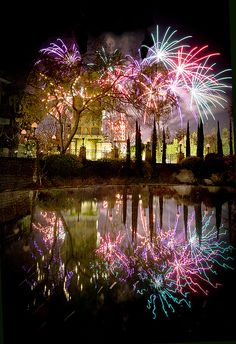 Fireworks Reflection / 20 Incredible Photographs of Fireworks Reflected in Water Fireworks Art, 4th Of July Fireworks, Fireworks Displays, Fireworks Pictures, Fireworks Photography, Water Photography, Fire Works, Water Reflections, Mirror Image