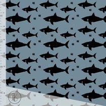 Sharks Evelyckan Design