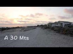 LAS CUBAS DE CYDONIA 2017 - YouTube