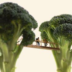 Fotografias en miniatura de Tatsuya Tanaka. Un puente sobre brócoli.