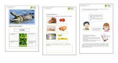 Materiales de apoyo para el aula DGCyE - * Blog Educación Primaria * Blog, Curriculum Design, Primary Education, Classroom