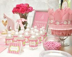 """Photo 4 of 46: Baby Girl Raspberry and Lime Green / Baby Shower/Sip & See """"Sip and See"""""""