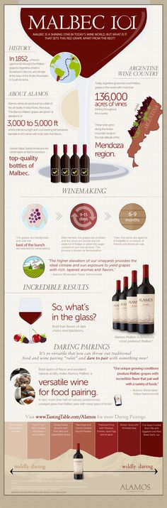 Food and wine pairing with Malbec red wine. Malbec, my fav wine. Malbec Red Wine, Art Du Vin, In Vino Veritas, Mets Vins, Wine Facts, Wine Education, Wine Tasting Party, Wine Guide, Wine And Beer
