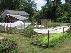 What I'd love to do in my spare time- Sustainable farming