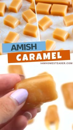 Amish Caramel is one of these easy soft chewy candy that melted in your mouth. This candy is a simple perfect treat and gift to your kids and families. This homemade candy recipe is made only with few staple ingredients. Have some caramel delight treat! Fudge Recipes, Cookie Recipes, Dessert Recipes, Potluck Recipes, Egg Free Desserts, Snacks Recipes, Fast Recipes, Yummy Recipes, Soup Recipes