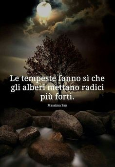 aphorisms truths truths & quotes poems and other words Truth Quotes, Words Quotes, Life Quotes, Sayings, Motivational Phrases, Inspirational Quotes, Italian Life, Italian Quotes, Italian Humor