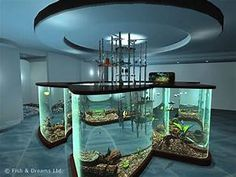 Home Aquarium Ideas - Complete Kits vs Individual Components - What is Better? Its soothing in our otherwise crazy high-speed lifestyles. Fish habitats come in practically every shape and size you can Nature Aquarium, Home Aquarium, Aquarium Design, Aquarium Fish Tank, Aquarium Ideas, Aquariums Super, Amazing Aquariums, Tanked Aquariums, Fish Aquariums