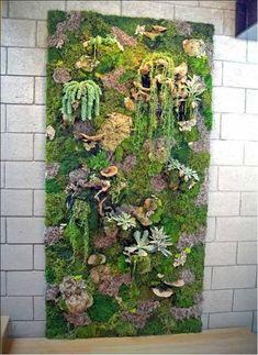 Vertical Garden with moss.