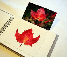 Watercolor art pasted into journal. Great idea!