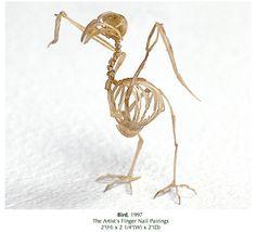Tim Hawkinson. Bird, 1997. Artist's finger nails
