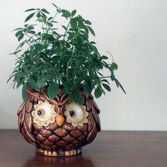 Owl Planter Pinned by www.myowlbarn.com