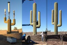 Antenna Cactus