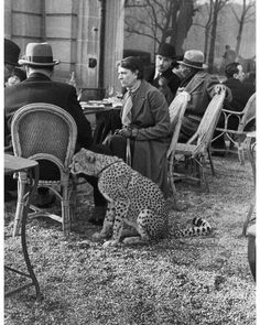 c. 1936. A woman sitting with her pet cheetah at a café in Paris, France. Photo by Alfred Eisenstaedt.   #Paris #woman #pet #cheetah #cafe #AlfredEisenstaedt #historyinpictures #historicalpix