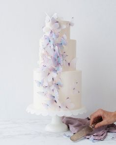 504 отметок «Нравится», 25 комментариев — Emily Lael Aumiller (@laelcakes) в Instagram: «Not sure how to tackle cake decorating for your wedding or a special occasion? Check out my handy…»