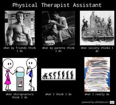 Physical Therapist Assistant Meme