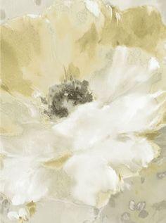 BELLA ROSA Galerie Wallpaper5803
