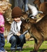 Ballarat Wildlife Park - a great place to get up close and personal with the animals!