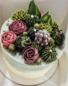 Incredibly Real-Looking Succulent Cupcakes by Brooklyn Flora.-Incredibly Real-Looking Succulent Cupcakes by Brooklyn Floral Delight Bakery – KickAss Things succulent cake - Pretty Cakes, Cute Cakes, Beautiful Cakes, Amazing Cakes, Cupcakes Succulents, Flores Buttercream, Buttercream Flower Cake, Cactus Cake, Cactus Cupcakes