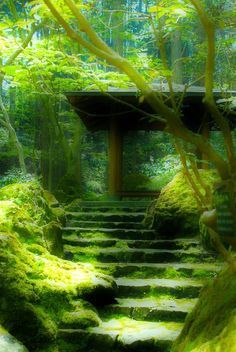 The emerald stairs - A Japnese scene in green