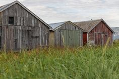 Old boat houses Old Boats, Landscape Photos, Norway, Shed, Houses, Outdoor Structures, Cabin, House Styles, Home Decor