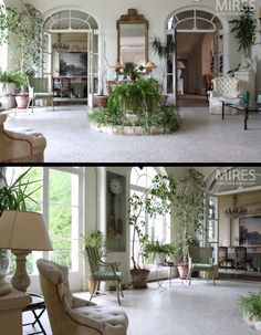 Renée Finberg ' TELLS ALL ' in her blog of her Adventures in Design: Indoor Fountain Used As A PLANTER